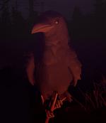 Contact raven