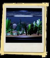 FotosLIS-Aquário2