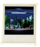 TX E3 2A SciClass Aquarium Unlocked