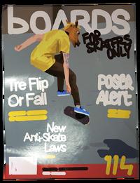 LiS1-E4-Boards magazine