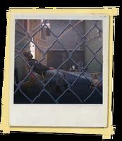 TX E2 2A DinerPark Dog Unlocked