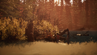 Drifters' Camp Lake (Day) 04