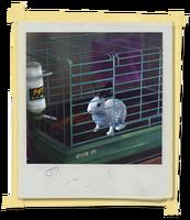 TX E2 1A KateRoom Rabbit Unlocked