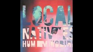Local Natives - Mt