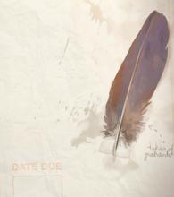 LiS1-DiaryPauseMenuBkg