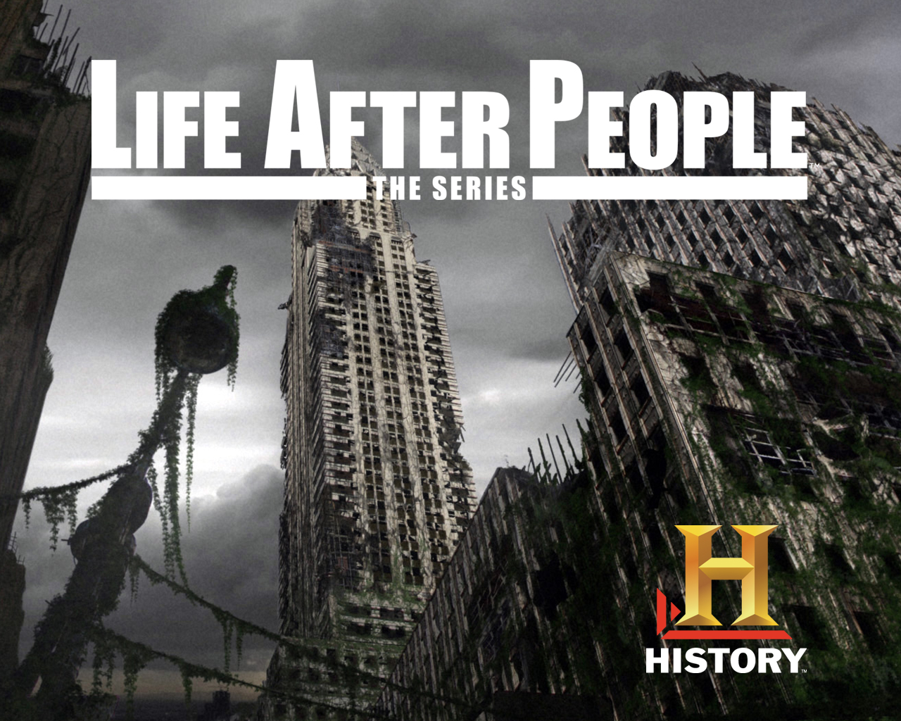 life after people the series life after people wiki