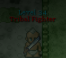 Tribal Fighter