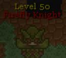 Firefly Knight