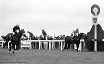 Wikia LoM - Red Rum winning GN ('73)