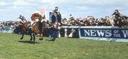 Wikia LoM - Red Rum winning GN ('77)