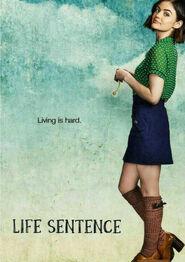 Life Sentence Season 1 Poster