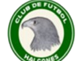 Halcones de Aguascalientes