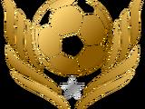 Copa Socio MX