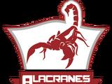 Alacranes Rojos de Apatzingán