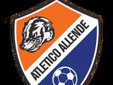 Atlético Allende