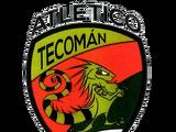 Tecomán FC