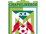 Chapulineros de Oaxaca