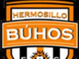 Búhos de Hermosillo