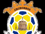 Atlético Potosino