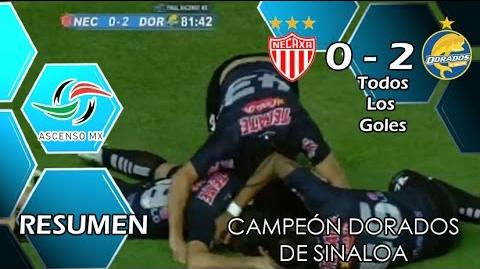 Necaxa vs Dorados 0-2 GOLES RESUMEN FINAL ASCENSO MX Clausura 2015 HD