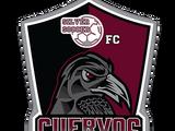 Cuervos de Silver Soccer