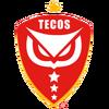 Tecos15logo