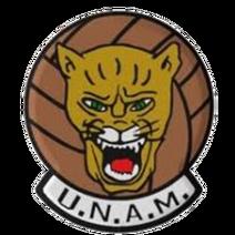 UNAMlogoant