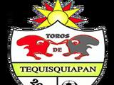 Toros de Tequisquiapan