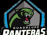 Panteras Negras GNL
