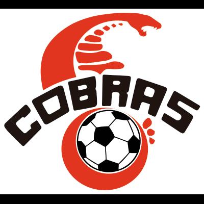 Cobras De Ciudad Juarez Futbol Mexicano Wiki Fandom