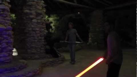 Lightsaber Knights at the Tea Gardens