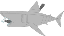 Mechanical great white shark pose 1c
