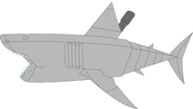 Mechanical great white shark pose 1a