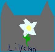 Lilyclan