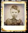 Wallace-Polaroid