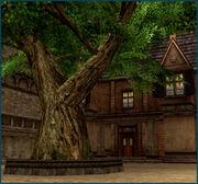 C2myth inn