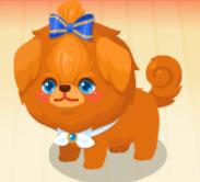 BEAST DOG