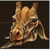Giraffebundle