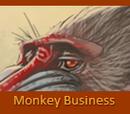 Monkey Business Mandrill