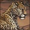 Starvingleopard