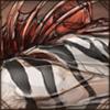 Zebracarcass
