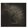 Aardwolftail