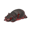 Carcass hippocalf