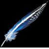Feather vulturineguineafowl