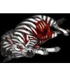 Carcass zebra