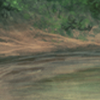 WaterholeBG