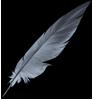 Feathercrane