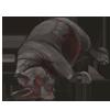 RhinoCarcass