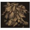 Cottonbark
