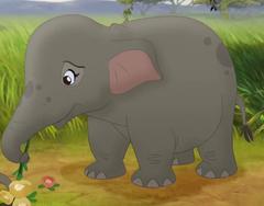 Baby-elephant-mh